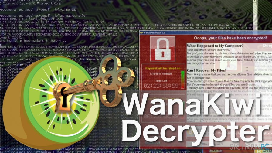 How to use Wanakiwi decrypter?