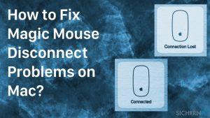 Wie behebt man Magic Mouse-Verbindungsprobleme auf dem Mac?