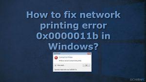 Wie behebt man bei einem Netzwerkdrucker den Fehler 0x0000011b unter Windows?