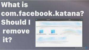 Was ist com.facebook.katana? Soll ich es entfernen?