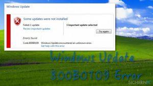 Wie behebt man den Windows Update-Fehler 800B0109?